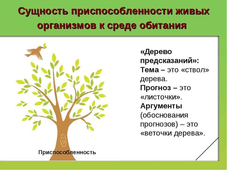 Сущность приспособленности живых организмов к среде обитания Приспособленност...