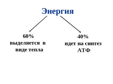 Энергия 60% выделяется в виде тепла 40% идет на синтез АТФ