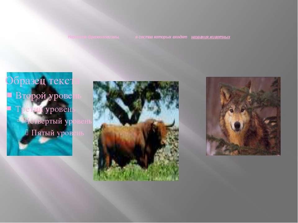 Назовите фразеологизмы, в состав которых входят названия животных