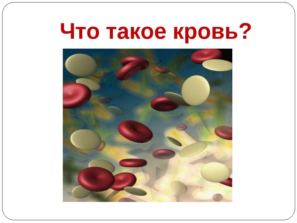 Что такое кровь?