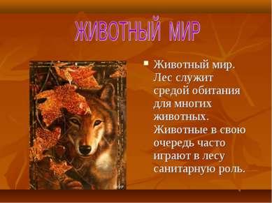 Животный мир. Лес служит средой обитания для многих животных. Животные в свою...