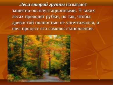 Леса второй группы называют защитно-эксплуатационными. В таких лесах пр...