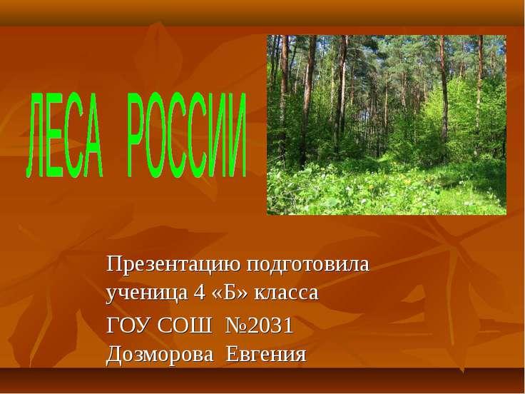 Презентацию подготовила ученица 4 «Б» класса ГОУ СОШ №2031 Дозморова Евгения