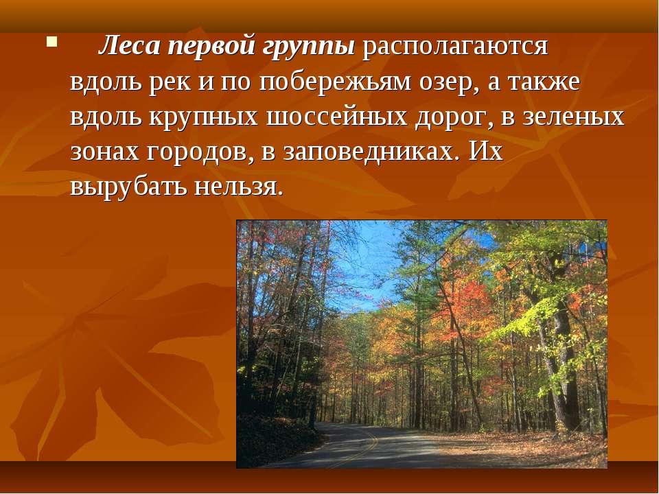 Леса первой группы располагаются вдоль рек и по побережьям озер, а также ...