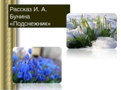 Рассказ И. А. Бунина «Подснежник»