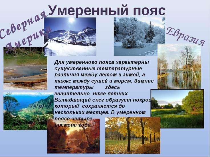 Умеренный пояс Евразия Северная Америка Для умеренного пояса характерны сущес...