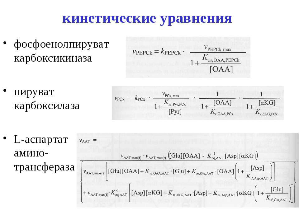 кинетические уравнения фосфоенолпируват карбоксикиназа пируват карбоксилаза L...