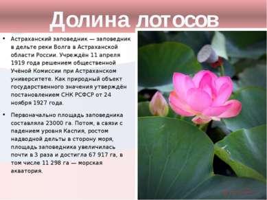 Долина лотосов Астраханский заповедник — заповедник в дельте реки Волга в Аст...