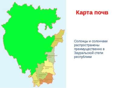 Карта почв Солонцы и солончаки распространены преимущественно в Зауральской с...