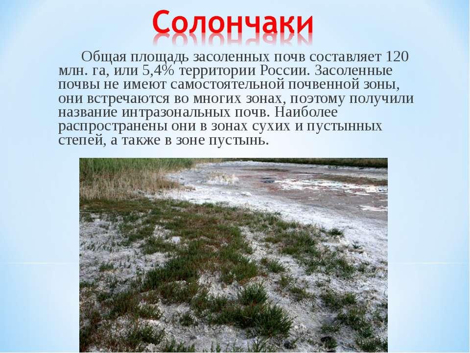 Общая площадь засоленных почв составляет 120 млн. га, или 5,4% территории Рос...