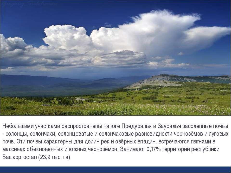 Небольшими участками распространены на юге Предуралья и Зауралья засоленные п...