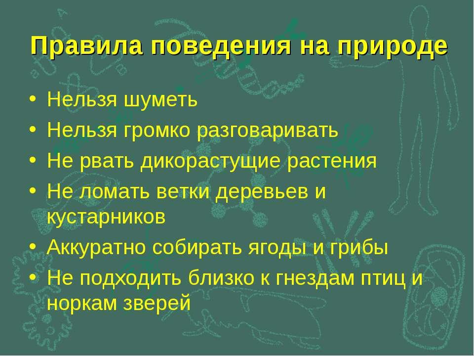 Правила поведения на природе Нельзя шуметь Нельзя громко разговаривать Не рва...