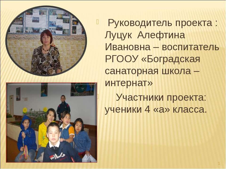 Руководитель проекта : Луцук Алефтина Ивановна – воспитатель РГООУ «Боградска...