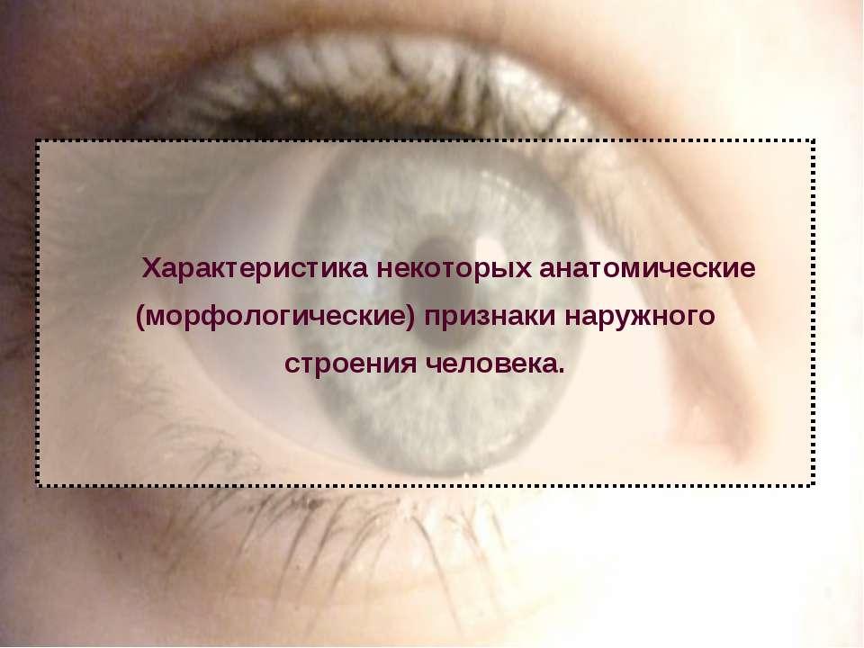 Характеристика некоторых анатомические (морфологические) признаки наружного с...