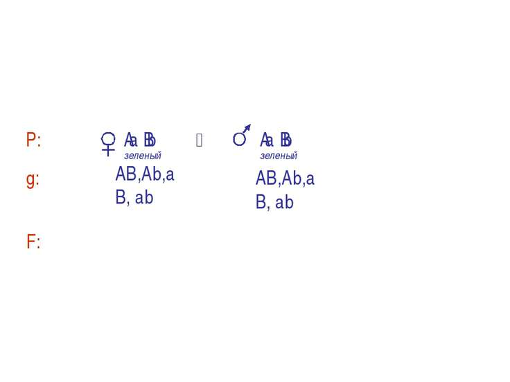 A В а b А В а b A- B- – зеленый цвет, aаbb – белый цвет А- bb – желтый цвет, ...