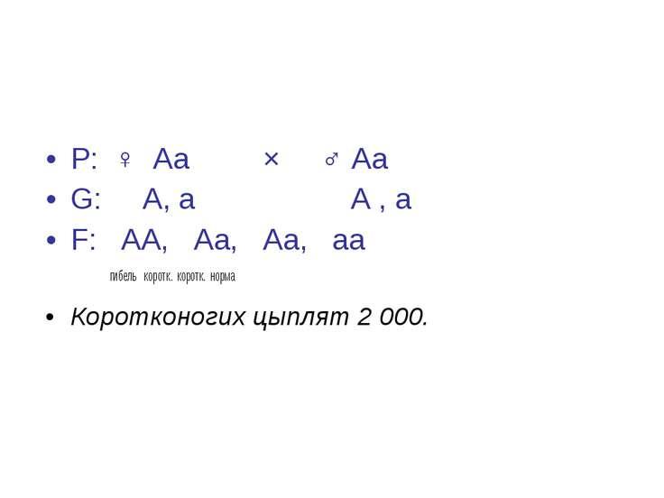 Р: ♀ Аа × ♂ Аа G: А, а А , а F: АА, Аа, Аа, аа гибель коротк. коротк. норма К...