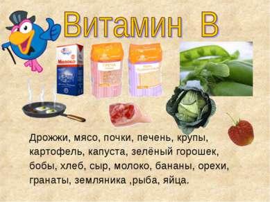 Дрожжи, мясо, почки, печень, крупы, картофель, капуста, зелёный горошек, бобы...