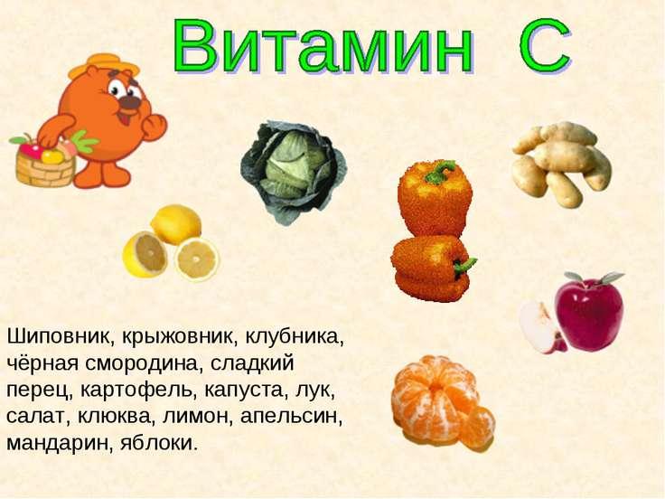 Шиповник, крыжовник, клубника, чёрная смородина, сладкий перец, картофель, ка...