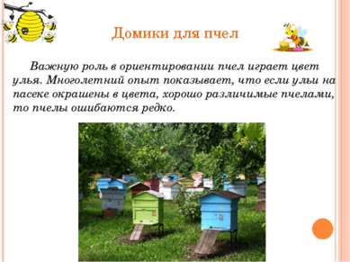 Домики для пчел Важную роль в ориентировании пчел играет цвет улья.Многолетн...