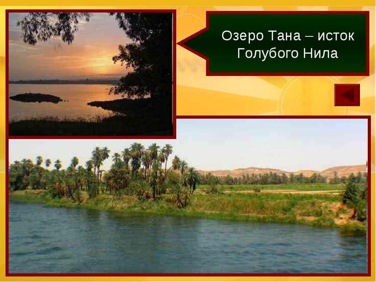 Озеро Тана – исток Голубого Нила