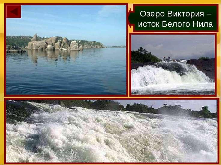 Озеро Виктория – исток Белого Нила