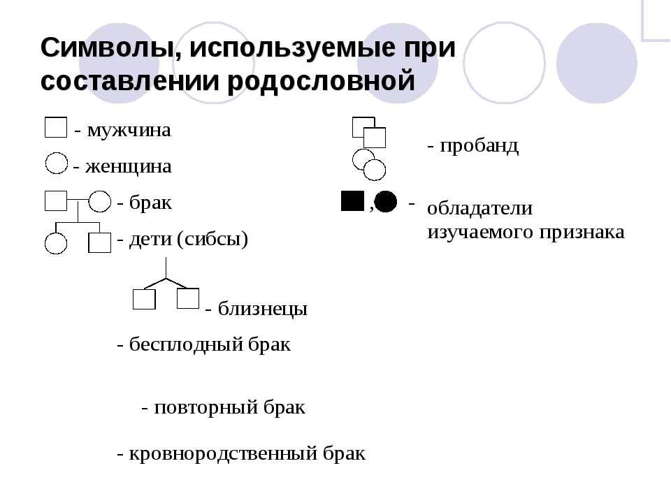 Символы, используемые при составлении родословной