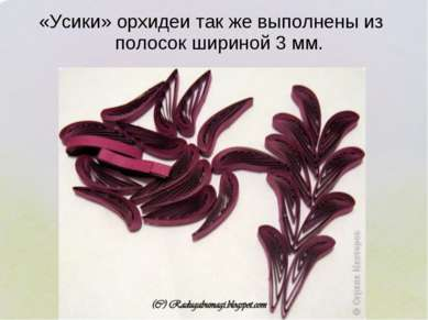 «Усики» орхидеи так же выполнены из полосок шириной 3 мм.