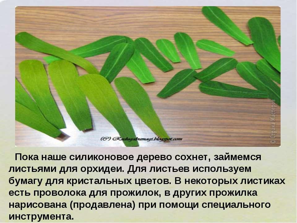 Пока наше силиконовое дерево сохнет, займемся листьями для орхидеи. Для листь...