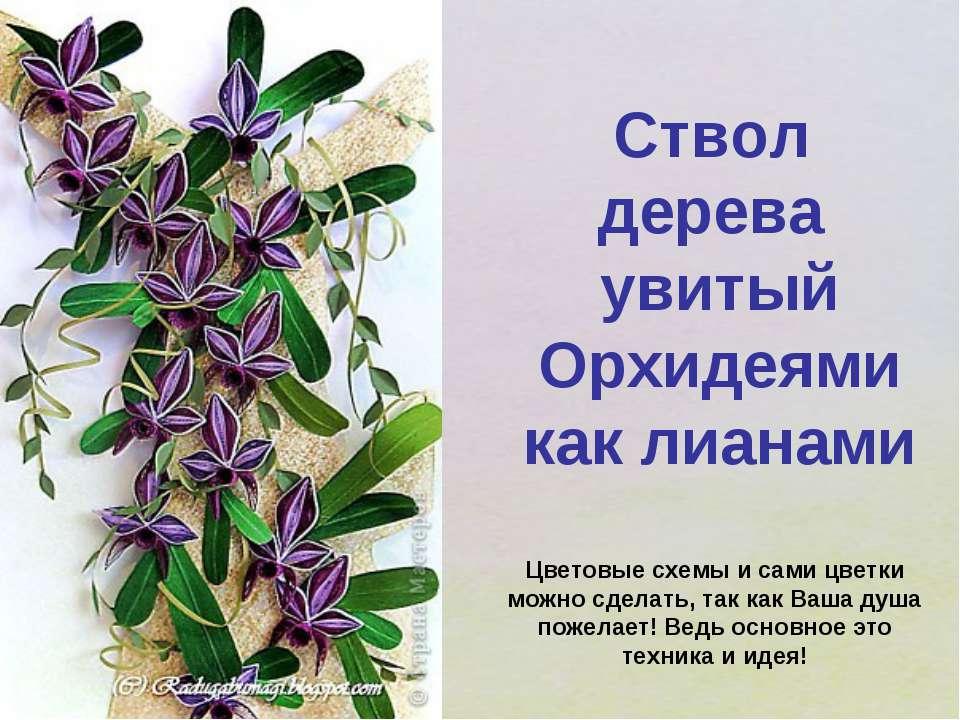 Ствол дерева увитый Орхидеями как лианами Цветовые схемы и сами цветки можно ...