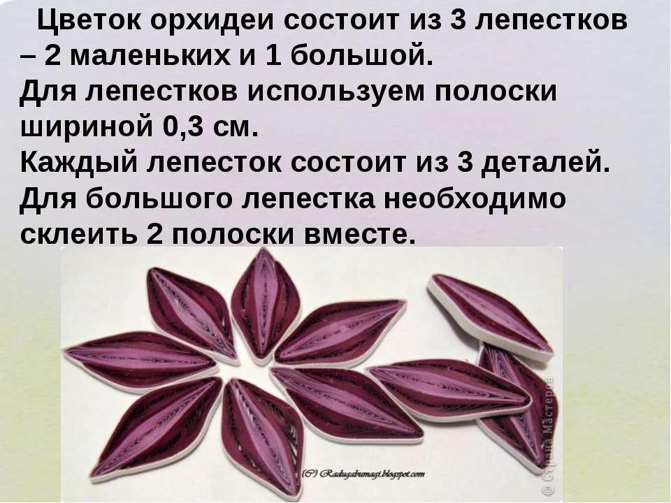 Цветок орхидеи состоит из 3 лепестков – 2 маленьких и 1 большой. Для лепестко...