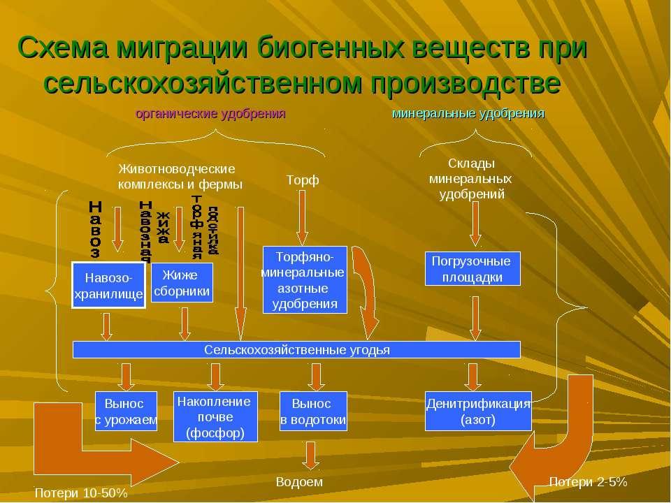 Схема миграции биогенных веществ при сельскохозяйственном производстве органи...