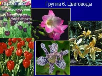 Группа 6. Цветоводы