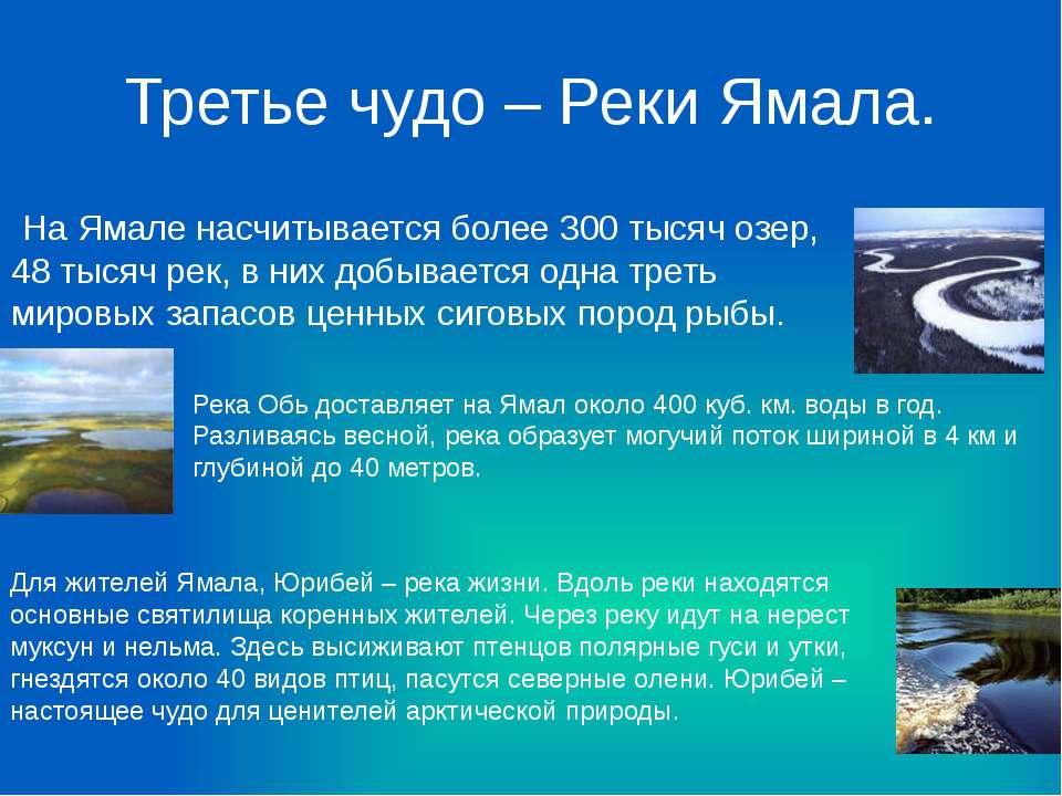 Третье чудо – Реки Ямала. На Ямале насчитывается более 300 тысяч озер, 48 тыс...