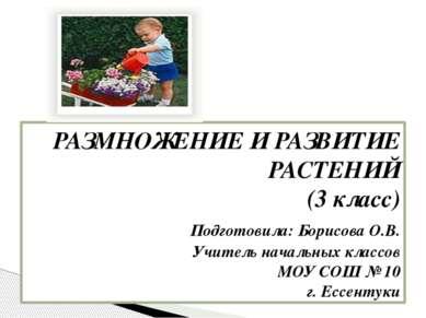 РАЗМНОЖЕНИЕ И РАЗВИТИЕ РАСТЕНИЙ (3 класс) Подготовила: Борисова О.В. Учитель ...