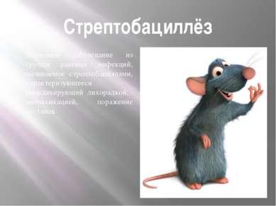 Стрептобациллёз Зоонозное заболевание из группы раневых инфекций, вызываемое ...