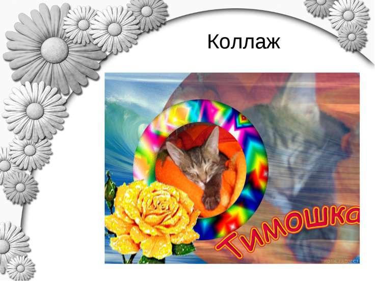 Коллаж Огородникова Е.В., 2010-2011