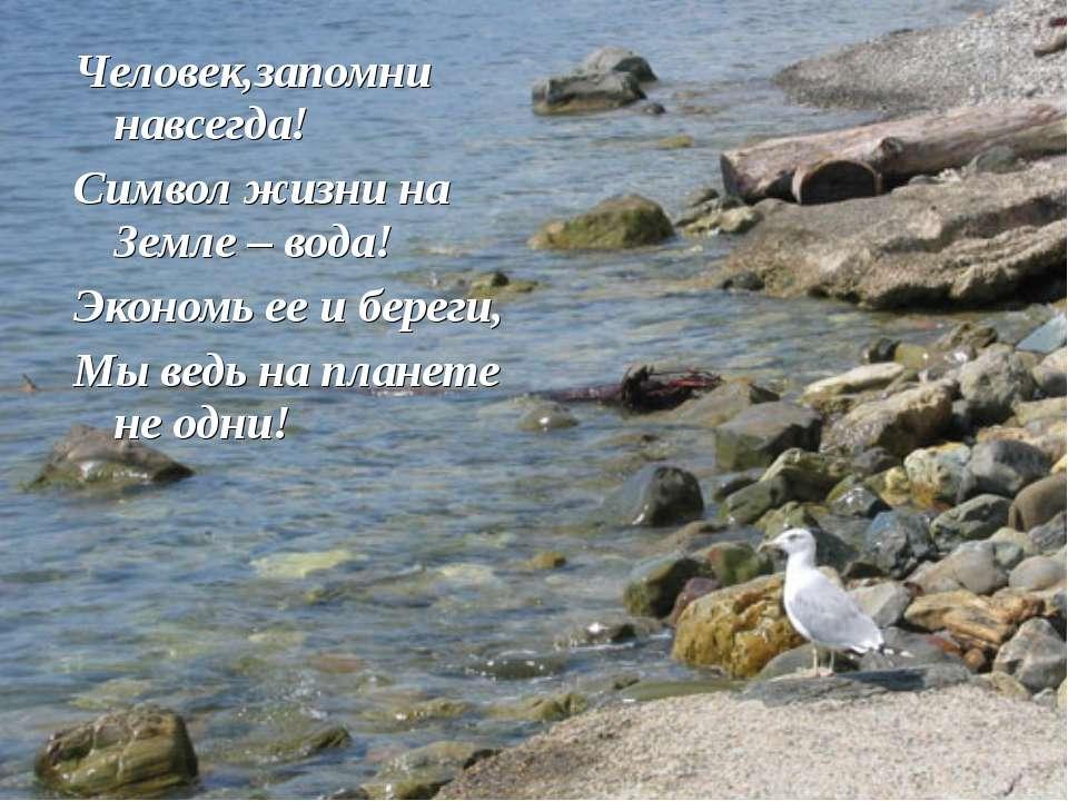 Человек,запомни навсегда! Символ жизни на Земле – вода! Экономь ее и береги, ...