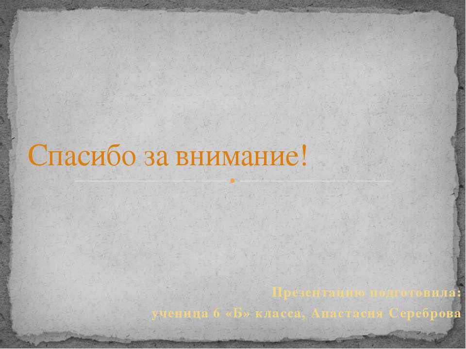 Презентацию подготовила: ученица 6 «Б» класса, Анастасия Сереброва Спасибо за...