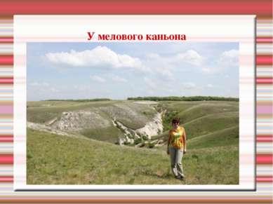 У мелового каньона