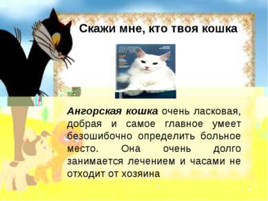 Скажи мне, кто твоя кошка Ангорская кошка очень ласковая, добрая и самое глав...