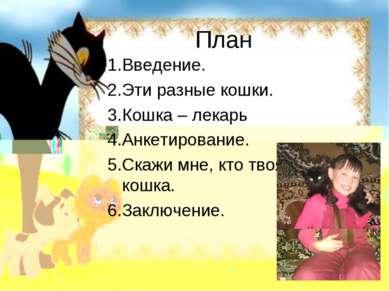 План 1.Введение. 2.Эти разные кошки. 3.Кошка – лекарь 4.Анкетирование. 5.Скаж...
