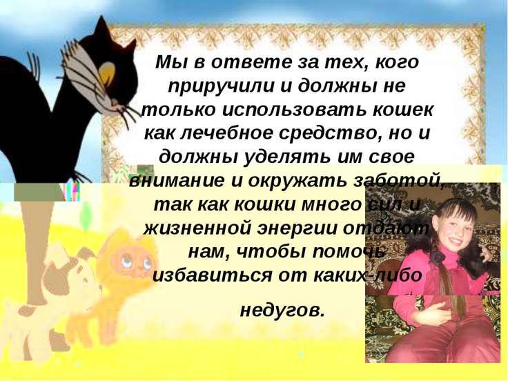 Мы в ответе за тех, кого приручили и должны не только использовать кошек как ...
