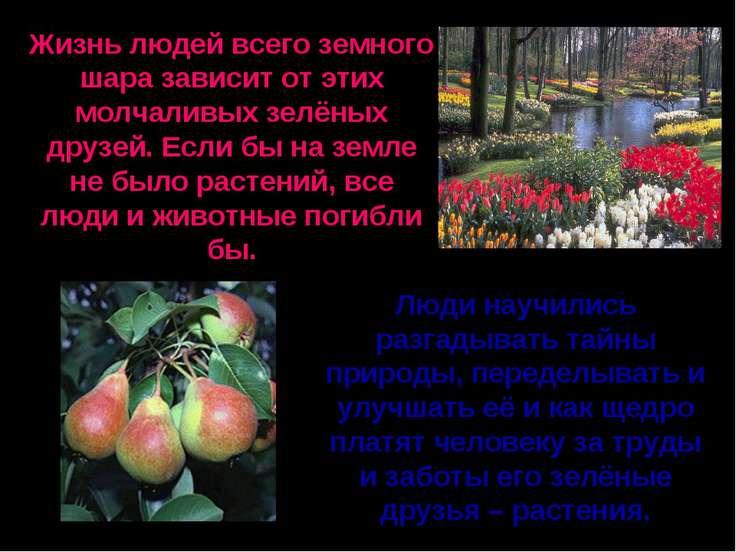 Жизнь людей всего земного шара зависит от этих молчаливых зелёных друзей. Есл...