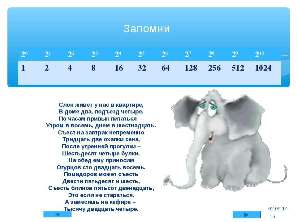 Слон живет у нас в квартире, В доме два, подъезд четыре. По часам привык пита...