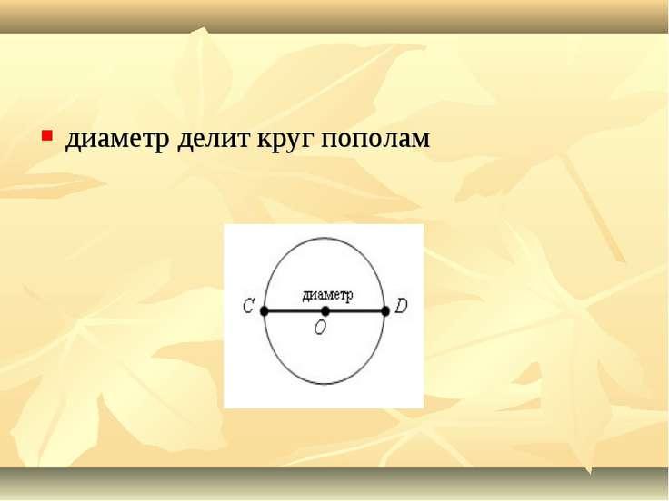 диаметр делит круг пополам