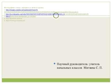 Фотографиии взяты с интернета и личного архива. 1. http://images.yandex.ru/ya...