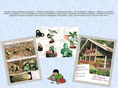 Основные методы и формы организации - «Письмо зеленому другу», «Секретный раз...