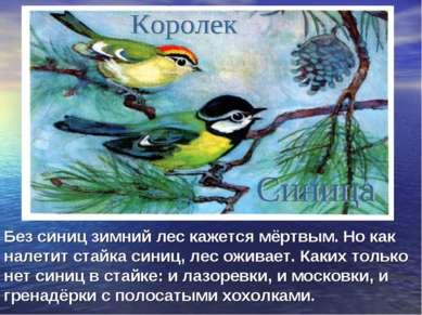 Без синиц зимний лес кажется мёртвым. Но как налетит стайка синиц, лес оживае...