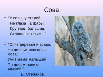 """Сова """"У совы, у старой Не глаза , а фары, Круглые, большие, Страшные такие…"""" ..."""