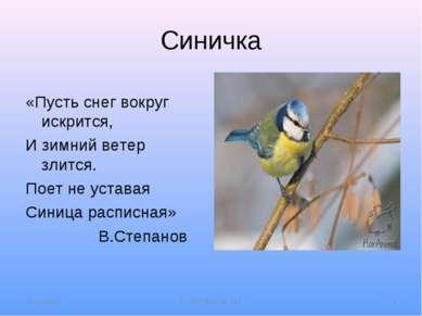 Синичка «Пусть снег вокруг искрится, И зимний ветер злится. Поет не уставая С...